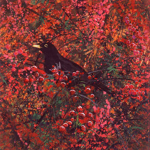 Berries and Blackbird By Paul Evans