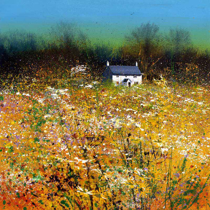 Summer Scented Field By Paul Evans
