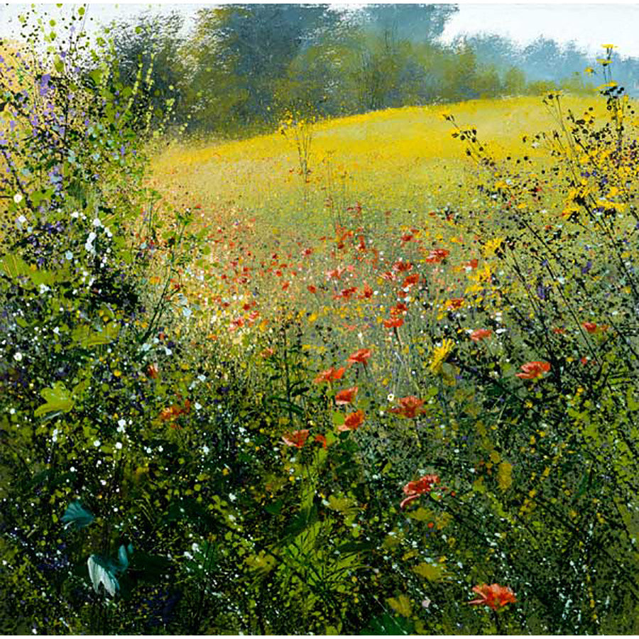 Summer Meadow By Paul Evans