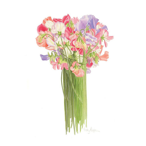 Sweet Peas By Vicky Mappin