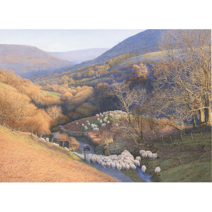 Valley With Sheep By Michael Embden
