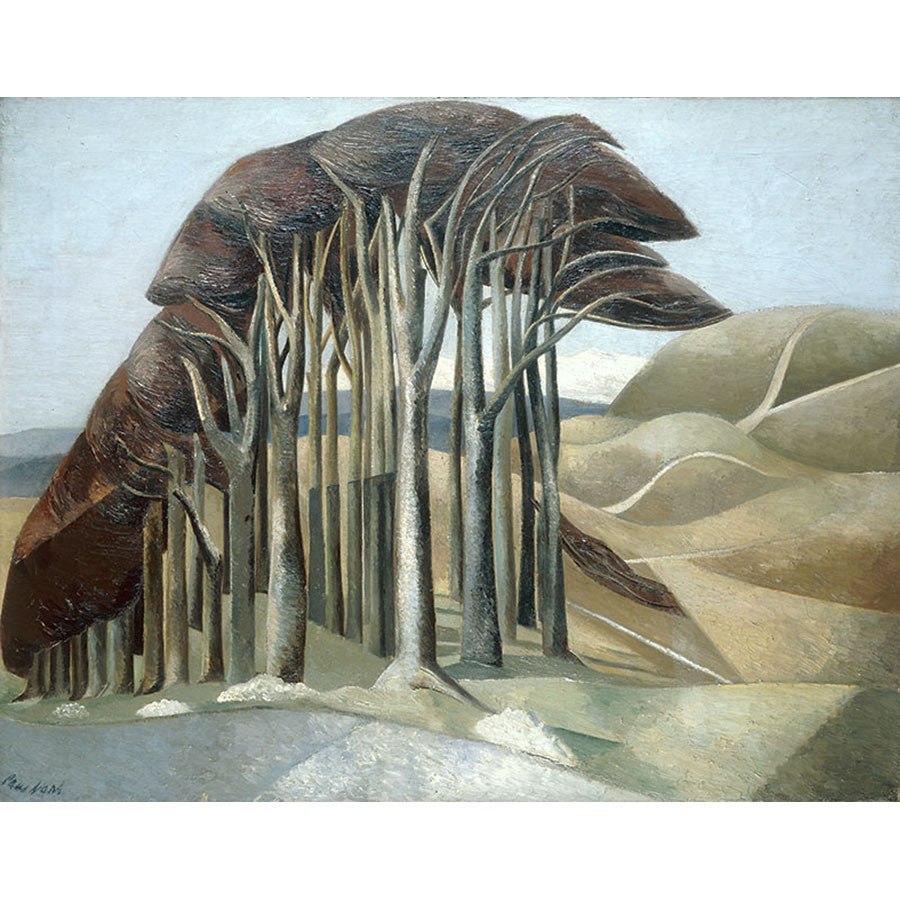 Wood On The Downs By Paul Nash