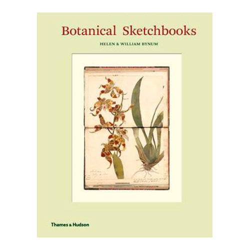 Botanical Sketchbooks (Hardback)