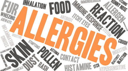 Low Histamine Diet - Anti-Histamine Foods to Fight Allergies