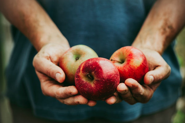 what is the healthiest apple