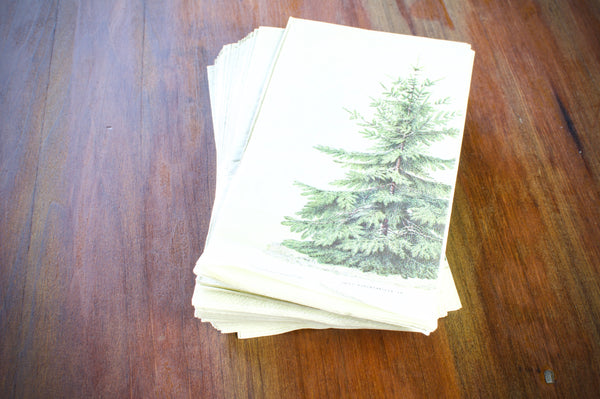 Oh Christmas Tree Guest Towels