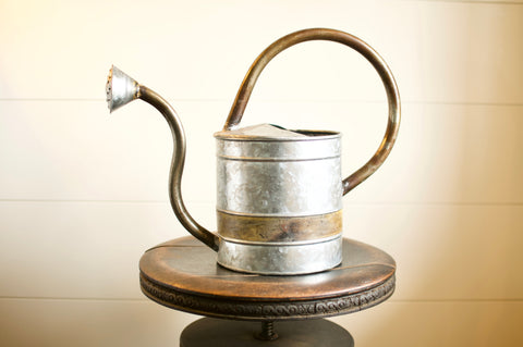 Gayle Watering Can