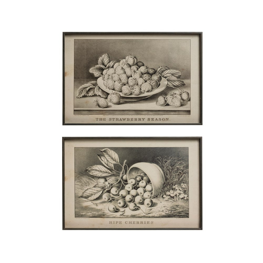 Framed Summer Berry Fruit Print  Set