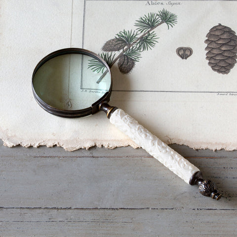 Embossed Handle Magnifier