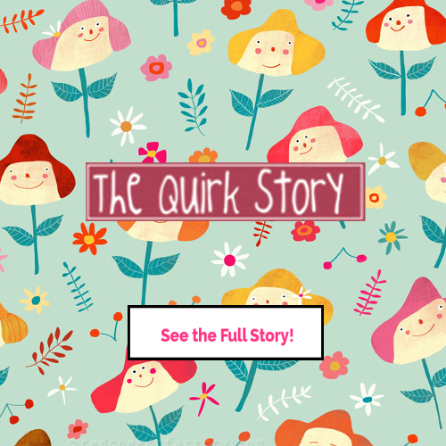 #B's The Quirk Story