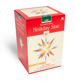 "21"" Holiday Gold & White Illuminating Star"