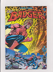 Collectibles:Comics:Bronze Age (1970-83):Alternative & Underground