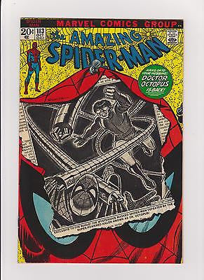 "The Amazing Spider-man      #113     ""High Grade""    1st App.  of Hammerhead - ComicBookKeys"