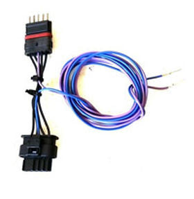 N20 and N55 EWG Harness