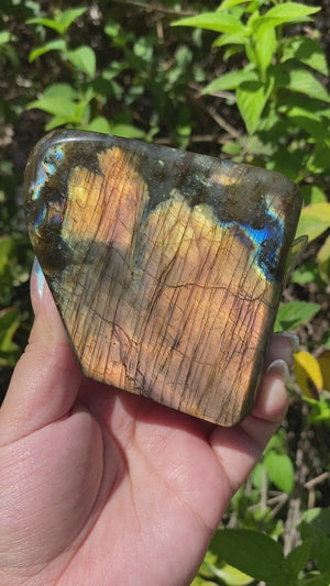 Load and play video in Gallery viewer, Labradorite Freeform