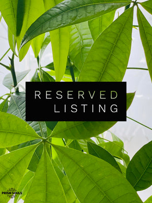 RESERVED LISTING - stephachin