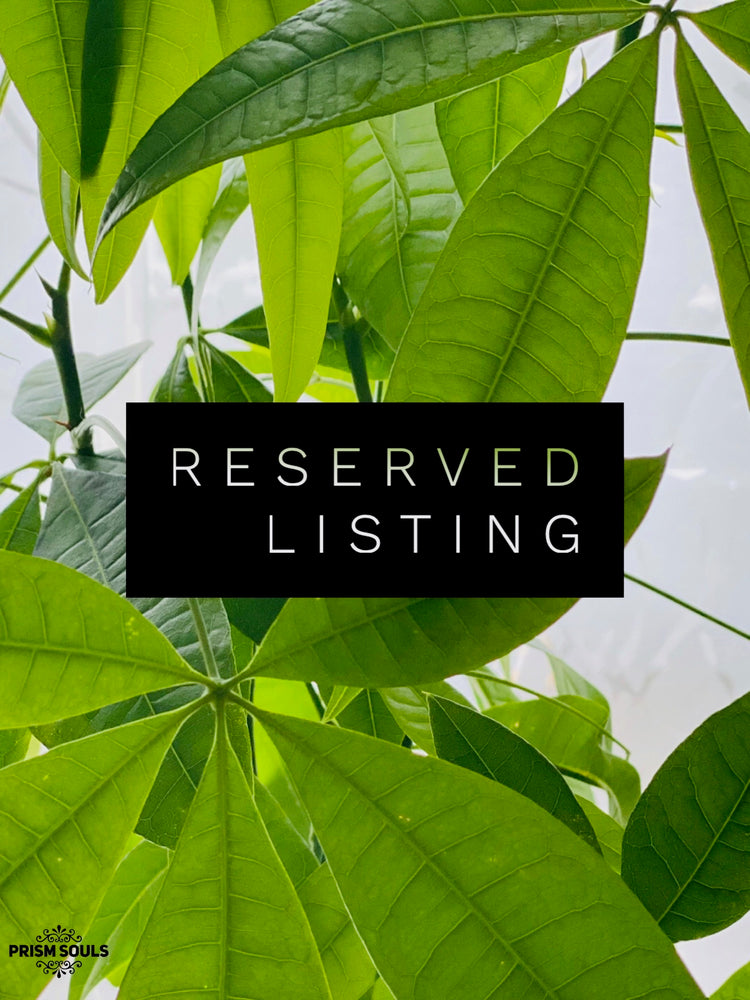 RESERVED LISTING - riahriches