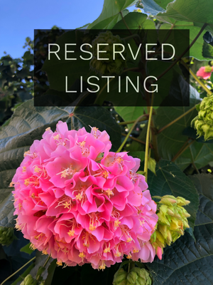 RESERVED LISTING - tayadee