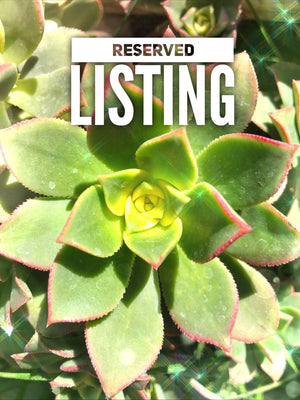 RESERVED LISTING - shelbay