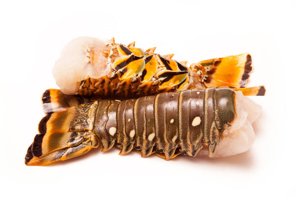 Spiny Lobster Tails
