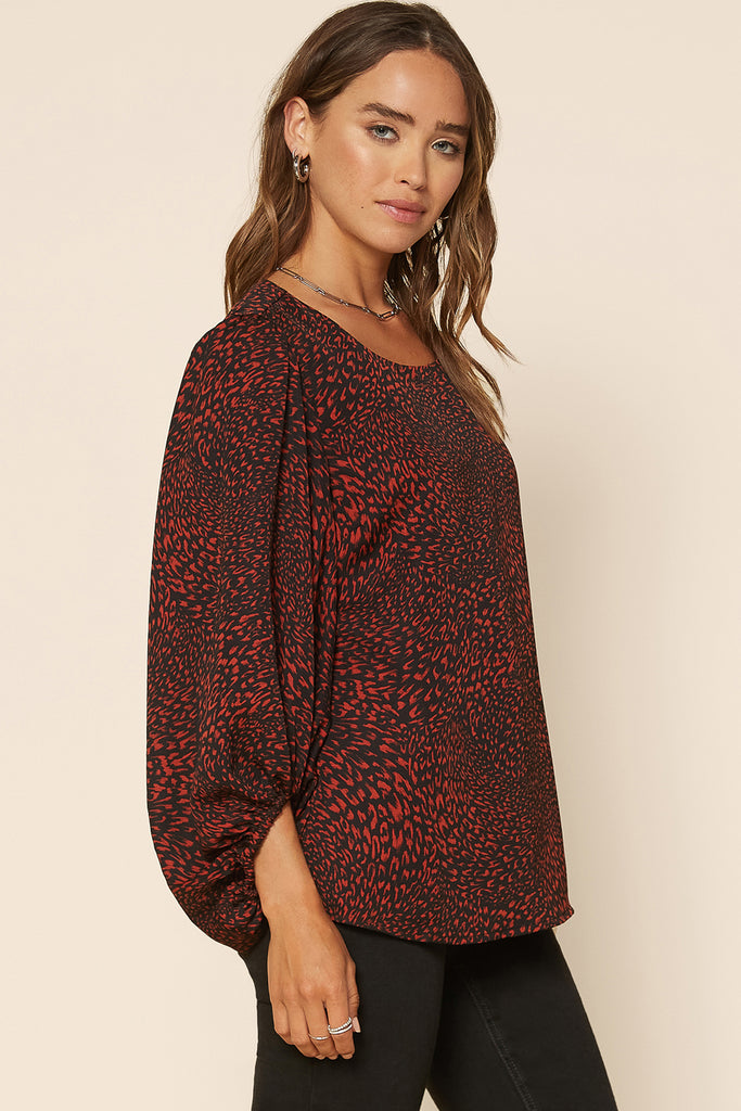 Scoop Neck Animal Print Blouse