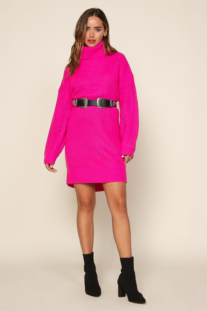 Knit Turtle Neck Sweater Dress