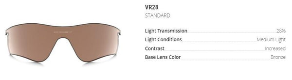 Base Lens Color Bronze