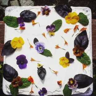 Cake + Edible Flowers