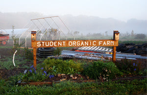 College organic, sustainability programs growing