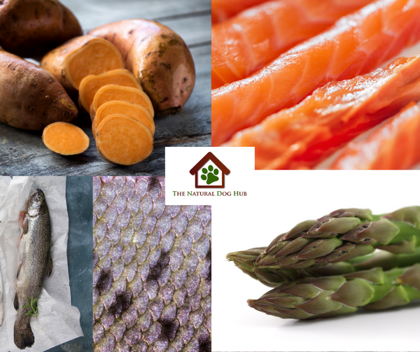natural-Grain Free-SMALL BREED-freshly prepared-salmon and trout, Sweet Potato & asparagus-Complete-dog-Food