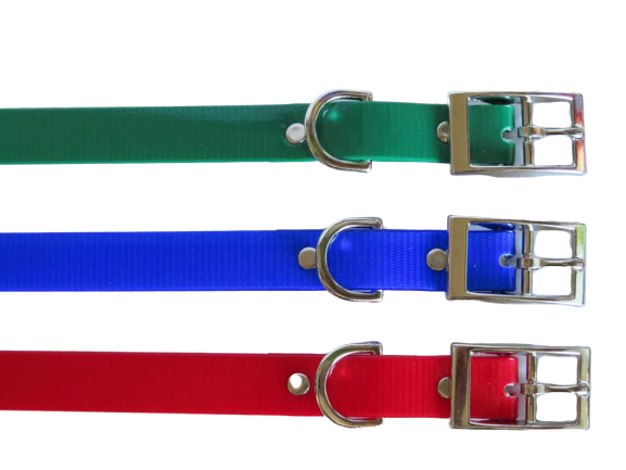 biothane dog collar red blue green