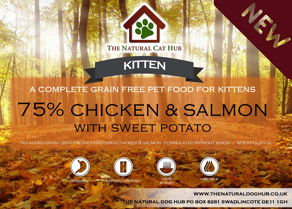 grain free-kitten-food-slamon-chicken
