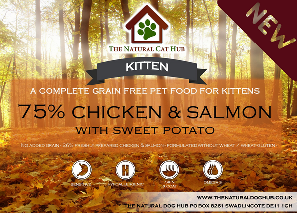 grain free-kitten-food-salmon-chicken