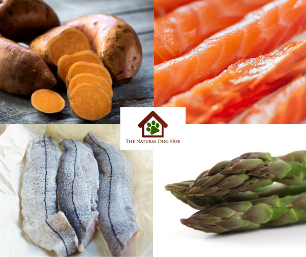 grain-free-natural-dog-puppy-food-salmon-haddock-asparagus-fish for dogs-fish 4 dogs