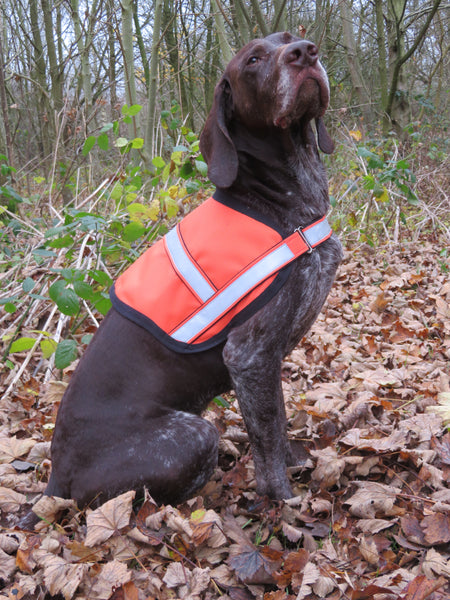 Hi Viz Vest-high-visibility-dog-coat