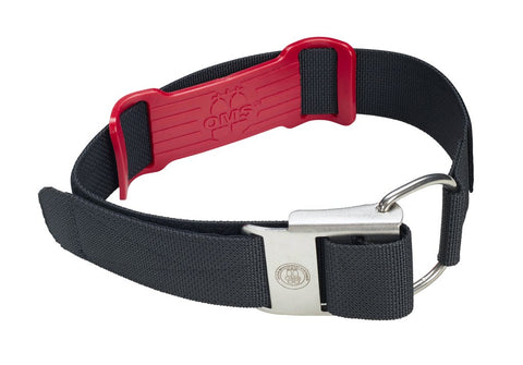 OMS 2 in. Nylon Camband w/ Stainless Buckle - 36 in. Length, OMS - New England Dive