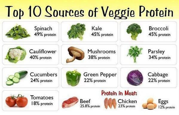 What Is The Best Protein In Food