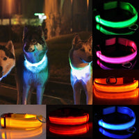 LED Pet Safety Collar LED Light Bulb