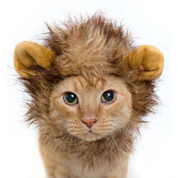 Lion Mane Wig for Pets Accessories