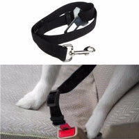 Pet Car Safety Seat Belt Tools