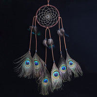 Peacock Feather Dream Catcher