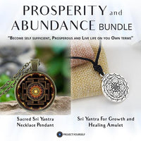 Prosperity and Abundance Bundle Necklace
