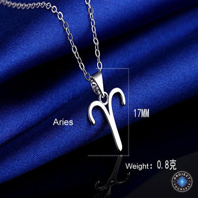 Silver Plated Zodiac Pendant Necklace Necklace
