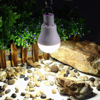 Solar Powered LED Lamp LED Lamp