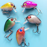 Mini Wobbler Crankbaits Offer (5 Pieces)