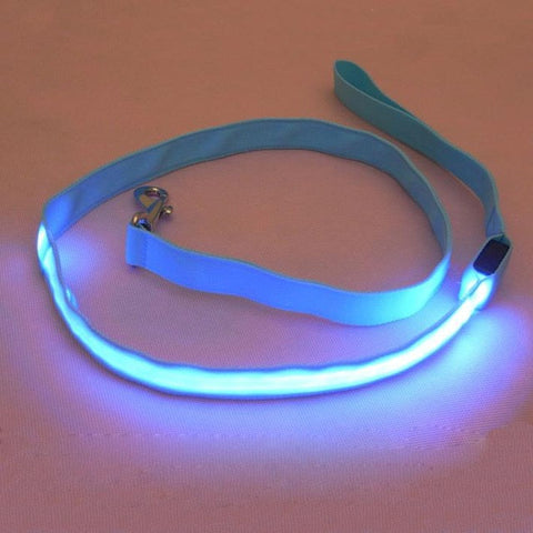 LED Pet Cat Dog LED Leash Safety Glow Leash