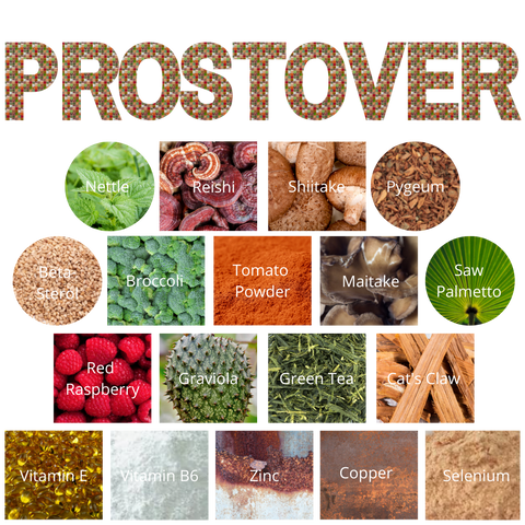 ProstOver Info Graphic with the Ingredients of ProstOver