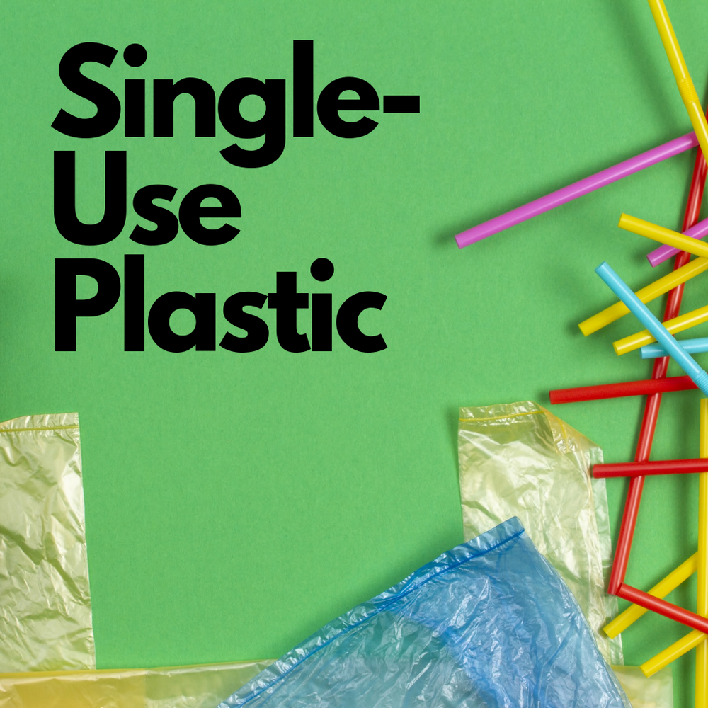 What is Single-Use Plastic?
