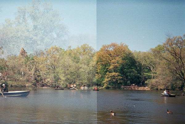 Central Park, Double Exposed Film