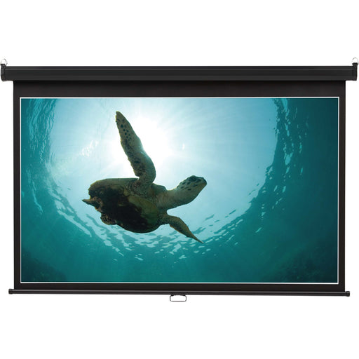 Quartet Manual Projection Screen